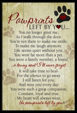 Pawprints Left By You Poem And Gift